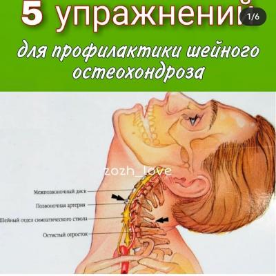 5 Упражнений для профилактики шейного остеохондроза